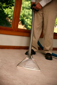 Specialist cleaning of carpet